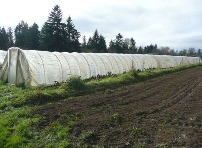 White high tunnel greenhouse next to tilled soil
