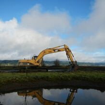 Restoring Critical Habitat using an excavator