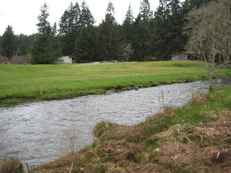 Stream lined with green grass with a building in the background
